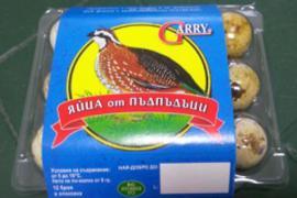 Яйца от пъдпъдъци - 6 бр.
