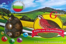 Яйца от пъдпъдъци - 24 бр.
